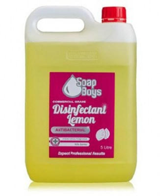 Cleaning Products - Disinfectant (Lemon)