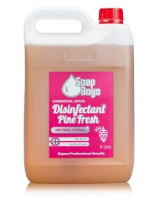Cleaning Products - Disinfectant (Pine)